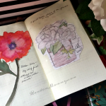 Flower Painting and a Sketch